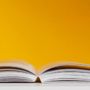 ¿Qué estudiar después de terminar Trabajo Social?
